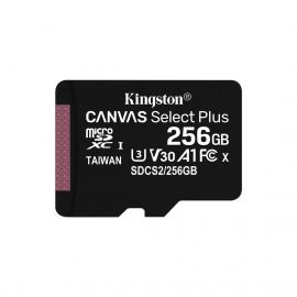 KINGSTON CARTE MSD 256GB 100MB/S CL10 SDCS2